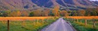 Road At Sundown, Cades Cove, Great Smoky Mountains National Park, Tennessee, USA Fine-Art Print