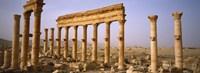 Ruins in Palmyra, Syria Fine-Art Print