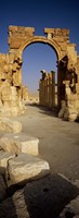 Old Ruins Palmyra, Syria (vertical) Fine-Art Print