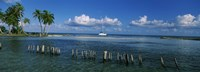Wooden posts in the sea with a boat in background, Laughing Bird Caye, Victoria Channel, Belize Fine-Art Print