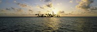 Silhouette of palm trees on an island, Placencia, Laughing Bird Caye, Victoria Channel, Belize Fine-Art Print