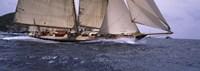 Sailboat in the sea, Schooner, Antigua, Antigua and Barbuda Fine-Art Print
