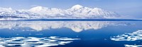 Reflection of a mountain range in an ocean, Bellsund, Spitsbergen, Svalbard Islands, Norway Fine-Art Print