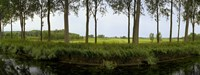 Channel passing through a landscape from Brugge to Damme, Belgium Fine-Art Print