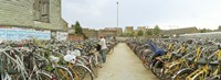Bicycles parked in the parking lot of a railway station, Gent-Sint-Pieters, Ghent, East Flanders, Flemish Region, Belgium Fine-Art Print