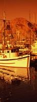 Fishing boats in the bay, Morro Bay, San Luis Obispo County, California (vertical) Fine-Art Print