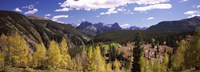 Aspen trees with mountains in the background, Colorado, USA Fine-Art Print