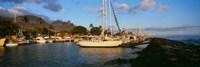 Sailboats in the bay, Lahaina Harbor, Lahaina, Maui, Hawaii, USA Fine-Art Print