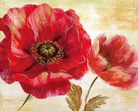 Passion for Poppies I Fine-Art Print