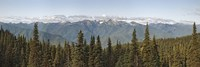Mountain range, Olympic Mountains, Hurricane Ridge, Olympic National Park, Washington State, USA Fine-Art Print