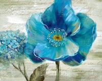 Blue Poppy Poem II Fine-Art Print