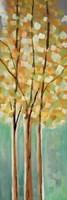 Shandelee Woods II Fine-Art Print