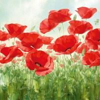 Holland Garden Fine-Art Print
