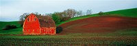 Red Barn in a Field at Sunset, Washington State, USA Fine-Art Print