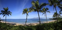 Palm trees on the beach, Maui, Hawaii, USA Fine-Art Print