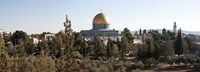 Trees with mosque in the background, Dome Of the Rock, Temple Mount, Jerusalem, Israel Fine-Art Print