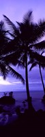 Palm trees on the coast, Colombia (purple) Fine-Art Print