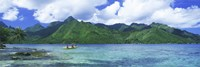 Polynesian people rowing a yellow outrigger boat in the bay, Opunohu Bay, Moorea, Tahiti, French Polynesia Fine-Art Print