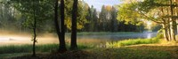 Dal River, Sweden Fine-Art Print