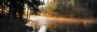 Fog over a river, Dal River, Sweden Fine-Art Print