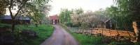 Dirt road leading to farmhouses, Stensjoby, Smaland, Sweden Fine-Art Print