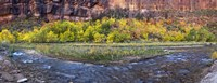 Virgin River at Big Bend, Zion National Park, Springdale, Utah, USA Fine-Art Print