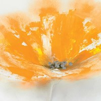 Wild Orange Sherbet I Fine-Art Print