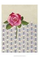 Rosa Ruby II Fine-Art Print