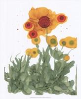 Poppy Whimsy I Fine-Art Print