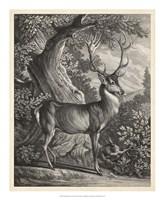 Woodland Deer I Fine-Art Print