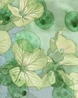 Mint Progeny III Fine-Art Print