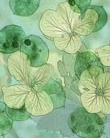Mint Progeny IV Fine-Art Print