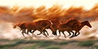 Blazing Herd II Fine-Art Print