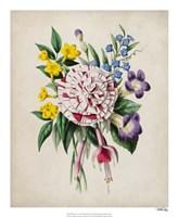 Spring Posy IV Fine-Art Print