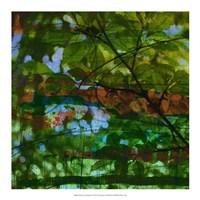 Abstract Leaf Study IV Fine-Art Print
