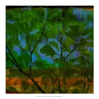 Abstract Leaf Study V Fine-Art Print