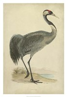Morris Crane I Fine-Art Print
