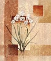 Delicate flowers I Fine-Art Print