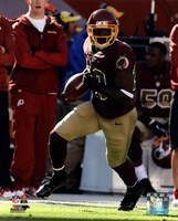 Pierre Garcon with the ball 2013 Fine-Art Print