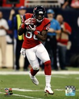 Andre Johnson 2013 Action Fine-Art Print