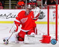 Jimmy Howard Hockey Goal Tending Fine-Art Print