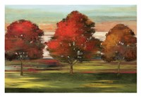 Trees in Motion Fine-Art Print