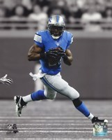 Reggie Bush 2013 Spotlight Action Fine-Art Print