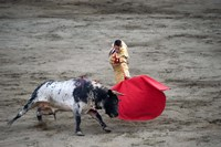 Matador and a bull in a bullring, Lima, Peru Fine-Art Print