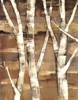 Wandering Through the Birches I Fine-Art Print