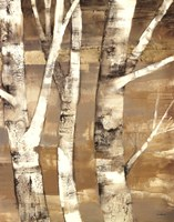 Wandering Through the Birches II Fine-Art Print