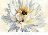 Painted Petals I Fine-Art Print
