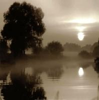 Reflections of the Sun Fine-Art Print