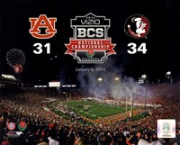 2014 BCS National Championship Florida State Seminoles vs. Auburn Tigers at the Rose Bowl Fine-Art Print