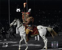 Florida Seminoles mascots Chief Osceola & Renegade 2014 BCS National Championship Game Fine-Art Print